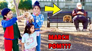 Did We Finally Find Our MISSING Puppy March Pom In This DOG PARK?!! ** SHOCKING** | Familia Diamond