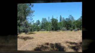 Shasta County Land For Sale In Anderson, CA - 42 Level Acres