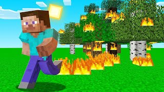 Minecraft BUT Walking = FIRE (Insane)