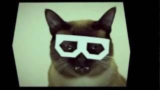 HIPER MEGA ULTRA DUBSTEP HIPSTER CAT