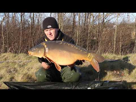New Stocking Of More 20lb+ Carp To Alpha At Tees Valley Lakes
