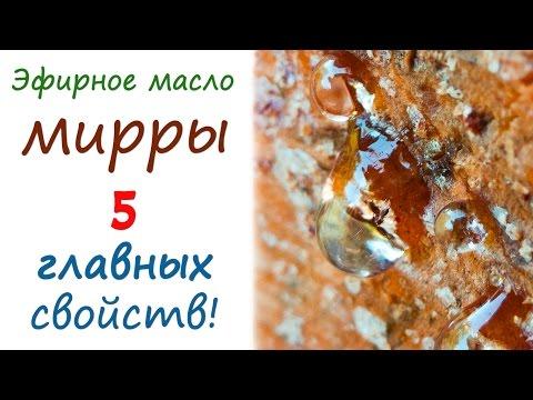 Масло мирра: свойства и применение эфирного масла в