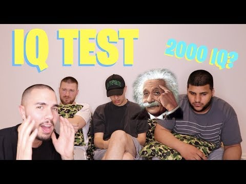 TESTING OUR IQ *RESULTS AREN'T SHOCKING*