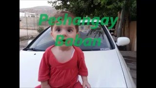 zana baban