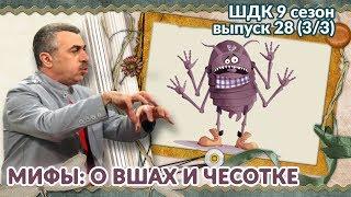 Мифы о вшах и чесотке - Доктор Комаровский
