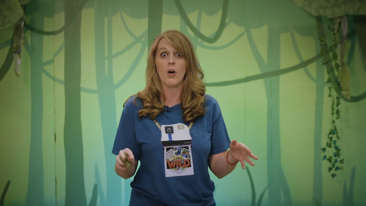 In The Wild - LifeWay VBS 2019 - Music Decorating