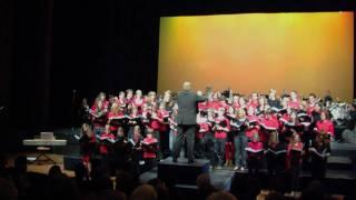 Adiemus (Karl Jenkins) - Vox Musica