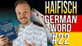 Learn German A.1 🇩🇪 Word Of The Day: Haifisch | Episode 22 | Get Germanized