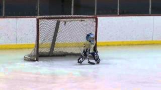 Bailey's First Hockey Game and Big Save