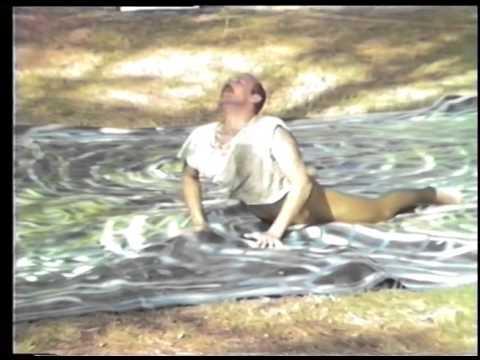 Delta Park 1984