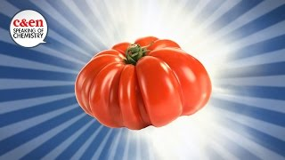How to make tomatoes taste awesome again — Speaking of Chemistry