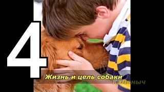 Жизнь и цель собаки | Брюс Кэмерон  4 из 7