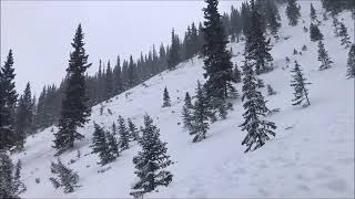 Avalanche Accident - Green Mountain - Express Creek - Jan 21, 2019