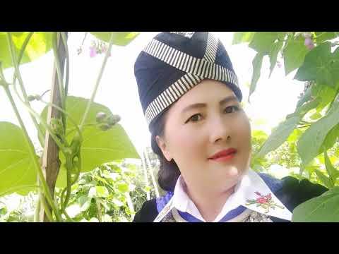 Sib Nrauj Thim Kwv Tij Thov Nyiaj /9/7/2019/