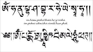 Om Hanu Pasha Bhara He Ye Svaha / Om Padmo Ushnisha Vimale Hum Phat