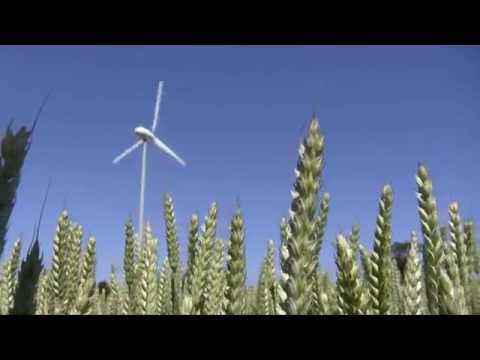 First Irish-made wind turbine installed on a French farm
