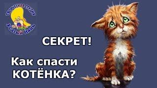 Секрет! Про котов. Елена Благинина. Котёнок. Все ищут этот стих. Деткам и малышам. [Усатый Нянь]