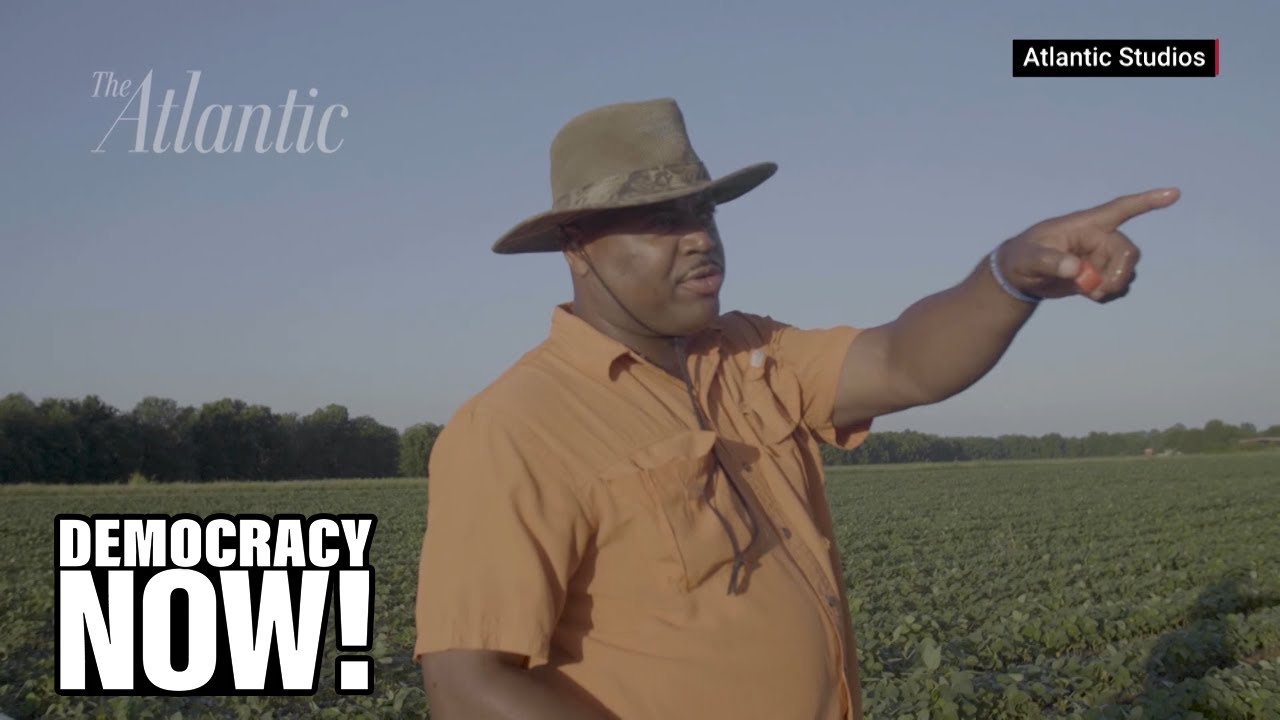 The Great Land Robbery: How Federal Policies Dispossessed Black Americans of Millions of Acres