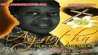 Agartha Murudzwa - No pain no gain( 2013)