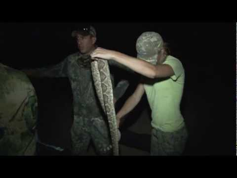 Texas Turkey Hunt, 2011, Wildlife Systems, Inc.