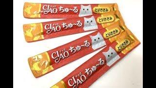 猫動画 ライムが元気になったのでおやつ❗ thumbnail