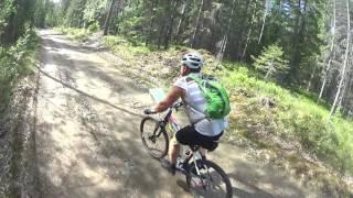 Велосипедисты и медведь на Ладога-Трофи 2016