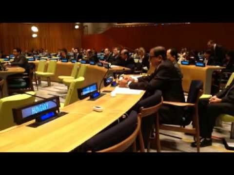 On rule of law in trusteeship council
