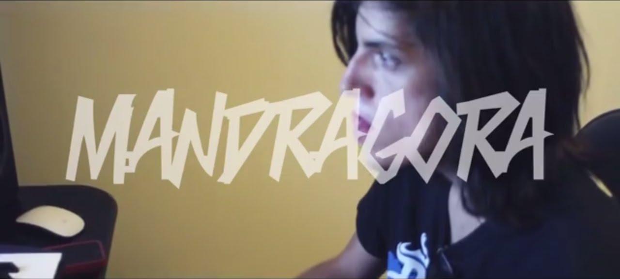 Mandragora Live Youtube
