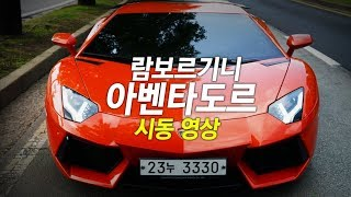 Lamborghini Aventador & 람보르기니 아벤타도르