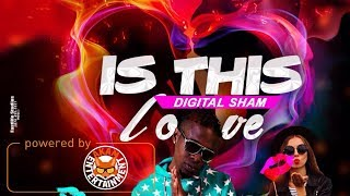 Digital Sham - Is This Love - January 2018