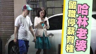 哈林嫂棄守主播台 留職停薪安5月胎 | 台灣蘋果日報
