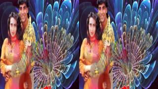 Love Songs  3D Zindagi Ko Bina Pyar  Kumar Sanu , Sarika Kapoor Haan  2002 M Sabir