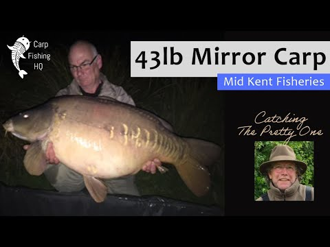 43 Pound Mirror Carp Caught At Mid Kent Fisheries Water By Trevor Ellse