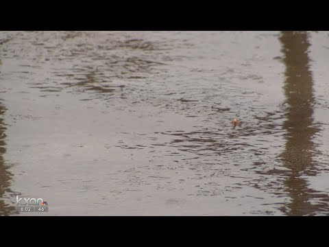 Above-average rainfall in Texas likely in upcoming months