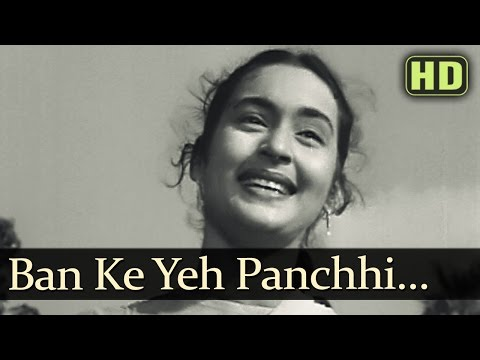 Yeh Panchhi - Raj Kapoor - Nutan - Anari - Lata Mangeshkar - Evergreen Hindi Songs