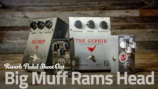 Big Muff Pi Ram