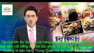 Cảnh giác mua nấm linh chi Hàn Quốc