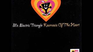 Mr. Electric Triangle - Total Float