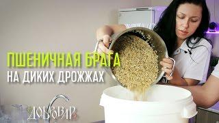 Рецепт и видео приготовления браги из пшеницы для самогона: как сделать из зерна, как поставить без дрожжей