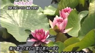 第1回 福井オープンディスクゴルフ ケーブルテレビ エリアニュース
