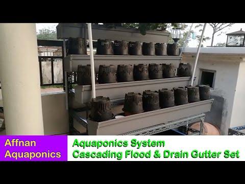 Cascading Siphon Flood & Drain Gutterbed Set - Affnan's Aquaponics