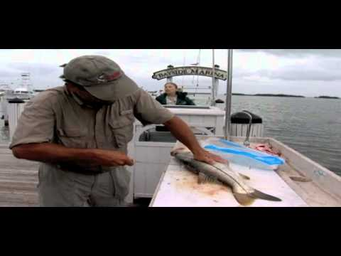 Waterways Episode 264 - Cold Snap of 2010 and Tamiami Trail Reconstruction