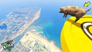 GTA 5 🐷 PIG PARKOUR !!! 🐷 JUMPS FALLS PARKOUR 🐷N*1🐷 GTA 5 ITA 🐷 DAJE !!!