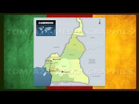 Travel Info Graphics Cameroon