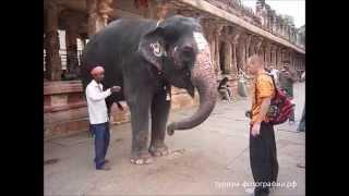 Индия Хампи Hampi India