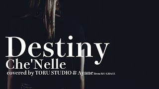 【フル】Destiny /シェネル(Che'Nelle)cover ドラマ『リバース』主題歌