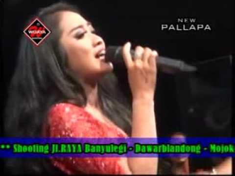 Seujung Kuku Anisa R New Pallapa Live Mojo Tengah Kedamean November 2016