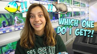 A NEW PET FOR JAYLA!! WILL HER PARENTS SAY YES?!