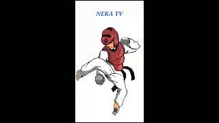 Taekwondo fan art, speed drawing(NEKA TV)