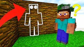 C'EST IMPOSSIBLE DE VOIR MON PIÈGE !   Minecraft